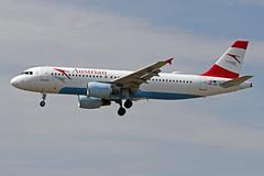 OE-LBU EDDF 15-06-2017 (Burmarrad (Mark) Camenzuli) Tags: airline austrian airlines aircraft airbus a320214 registration oelbu cn 1478 eddf 15062017