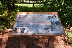 Terrapin Nature Area, Stevensville MD 14 (Larry Miller) Tags: naturepark conservation chesapeakebay maryland 2017