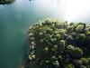 sunlover (Philipp Sarmiento) Tags: regensburg philipp sarmiento canon sigma lifestyle landscape waterscap sunset sonnenuntergang portait farben wasser see