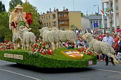 Flower Carnival, Debrecen 2017 (misi212) Tags: float debrecen flower carnival 2017