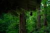 五重塔の釣り灯籠