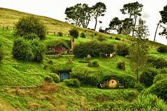 A life around Hobbiton Movie Set (T Ξ Ξ J Ξ) Tags: newzealand hobbiton hobbitonmovieset matamata d750 nikkor teeje nikon2470mmf28 lbwarmingcpl hobbit house hole home