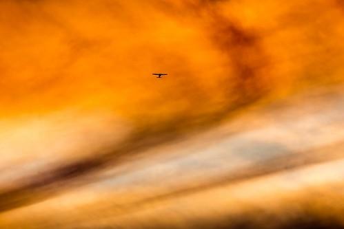 Melbourne Sunset-9