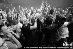 2017 Bosuil-Het publiek bij Back To Back en The Lachy Doley Group 9-ZW