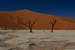 (mdiec) Tags: namibia africa landscape mountains hills sossusvlei desert dunes namib sand sunrise sky trees dry land