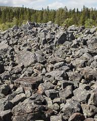 Töfsingdalen IV (Gustaf_E) Tags: dalarna forest gustavlindholm landscape landskap nationalpark skog sommar sverige sweden töfsingdalen töfsingdalensnationalpark urskog woods