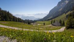 The view of Alps (HansPermana) Tags: mountpilatus lucerne luzern alps alpen switzerland dieschweiz summer nature mountain aerialview