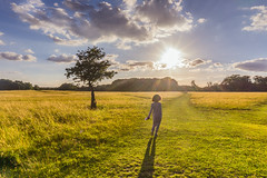 """""""Turn your face to the sun and the shadows fall behind you. Unknown (Lorrainemorris) Tags: phoenixpark sunny starburst happy walking boy ireland dublin green sun"""
