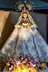 Nuestra Señora de Paloma (Fritz, MD) Tags: kalumpangmarianexhibit2017 marianexhibit kalumpang kalumpangmarikinacity sanantoniodepaduaparish parokyanisanantoniodepadua marikinacity nuestraseñoradepaloma