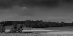 Autumn landscape (PHOTOGRAPHY Toporowski) Tags: ökologie landschaft kontrast germany bw sw contrast eco wolken blackwhite clouds biodiversity deutschland schwarzweis landscape eschweiler nrwnordrheinwestfalen deu