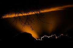 Backlit Clouds (Tim @ Photovisions) Tags: nebraska clouds sky tree dusk dawn sun sunset sunrise