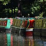 Basingstoke Canal Frimley Lodge Park 22 September 2017 005 thumbnail