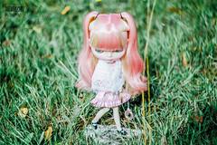 my Pink love♥