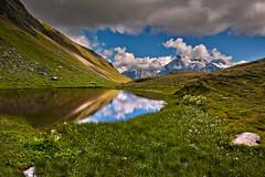 Hiking in Switzerland ; Grindelwald , First , above Bachsee . No. 8967. (Izakigur) Tags: switzerland svizzera lasuisse lepetitprince helvetia liberty izakigur flickr feel europe europa dieschweiz ch musictomyeyes nikkor nikon suiza suisse suisia schweiz suizo swiss سويسرا laventuresuisse myswitzerland landscape alps alpes alpen schwyz suïssa d700 nikond700 nikkor2470f28 berneroberland kantonbern water eau acqua topf25 1000faves