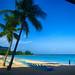 Barbados Beach Life