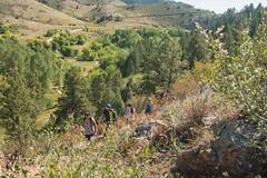 _JRK1077.jpg (CAP VRC - University of Colorado-Denver) Tags: planing murp plantsecology lairothebearpark plants parks mouintains fall september austintroy