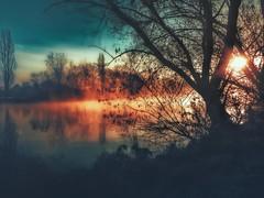 Sonnenaufgang... (hobbit68) Tags: sunset 🌅 sonne sonnenschein ☀️ sunshine water wasser trees gras v busch fluss himmel 🌌 sky sommer