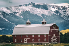 Red Barn (RoxMontana) Tags: 7dwf barn landscape
