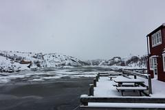 IMG_2506 (alessandro orfanù) Tags: norway lofoten vesteralen hurtigruten winter snow northernlight