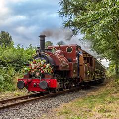 Floral train, Talyllyn Railway 2017 (Explore) (babs pix) Tags: talyllynrailway no1talyllyn rhydyronen tywyngwynedd steamrailway steamengine heritage narrowgauge greatlittletrainsofwales