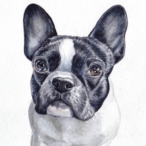 Check out this pawsome #watercolorportrait that my new friend @lisa.creative.lab made of me! . Thank You Lisa! You Rock & Are Extremely Talented! 👍