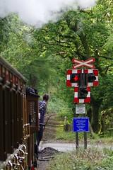 Crossing (Sundornvic) Tags: train steam rail railway rails talylyn wales woods trees hills valleys vintage transport