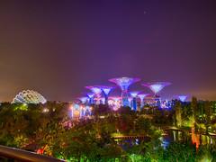 Gardens by the Bay (Saaliahc) Tags: omdm5 singapore singapur night nacht hdr colors city citylights architecture architektur christmas landscape landschaft