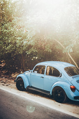 *** (Gabriela Tulian) Tags: car parked street travel tree palm vw red tulum tropical tropic mexico volkswagen beetle sunlight sunshine