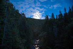 Hazy Moon D7C_4667 (iloleo) Tags: night moon landscape longexposure timelapse steadybrook newfoundland nikon d750 brook trees