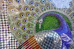 IMG_6224e (gue*) Tags: udaipur mosaic peafowl peacock mor chowk