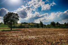 Alle porte del Monferrato (AL) (Gianni Armano) Tags: alle porte del monferrato località clorio foto gianni armano photo flickr