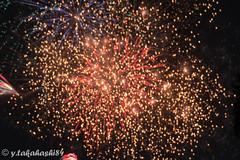 _IMG5955.jpg (y.takahashi84) Tags: hanabi fireworks 花火 さいたま urawa 浦和 東浦和 saitama 日本の夏 summer japan
