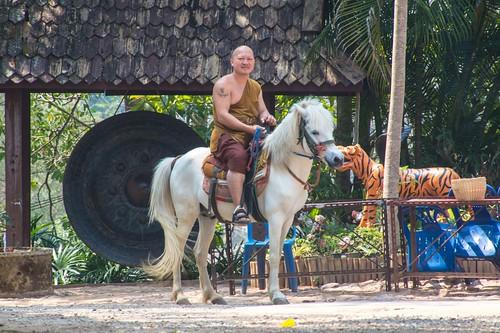 mae fah luang - thailande 29