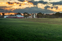 amish hayfield (Christian Collins) Tags: canoneos5dmarkiv ef24105mmf4lisusm hayfield hay amish haystack clare gladwin midland mi michigan midmichigan amishcountry farm campo granjero barn sunset atardecer evening twilight tardes field summer august 2017