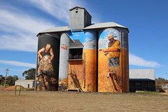 WEETHALLE Silo Art (Jungle Jack Movements (ferroequinologist)) Tags: heesco khosnaran mid western highway nsw new south wales australia australian weethalle riverina art artist paint painting airbrush summer acre tonne ton ship share fence dust dry flat silo hay feed bale load semi trailer truck stack fodder harvest harvester reaper cutter gatherer gleaner mower farm farmer strip combine thrasher thresher crop yield produce return reap sow pick garner plant grow grain soil wheat oats barley field paddock tractor auger team market
