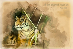 All great achievements require time. (Maya Angelou) (boeckli) Tags: tarongazoo tiger sevenstyles photoshop watercolor watercolour sydney australia newsouthwales tier animal textures texturen texture textur topaz topazsimplify outdoor