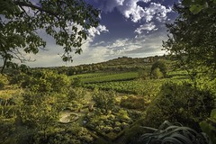 Figline, Toscana, Italy (Martina Stoltz) Tags: toscana toskana nikon d7200 italy italien figline casanuova ins instagood landschaft landscape nature natur