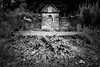 The Red Well (ibriphotos) Tags: monochromatic neglect exploreclacks thistle bnw clackmannanshire mono weeds achromatic arnsbrae alloa abandoned pleasuregrounds blackandwhite exploreclackmannanshire well weecounty park abandonedscotland ruin jaggy jaggynettles