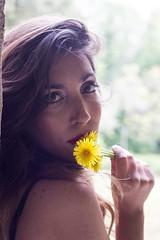 Dandelion - Tarassaco (diego_russo) Tags: diegorusso dandelion tarassaco taraxacum fiore flower flor giallo yellow amarillo girl femme eyes sexy