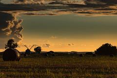 Aulakowszczyzna (2) (Stach_Trach) Tags: aulakowszczyzna windmill wiatrak podlasie korycin sokólszczyzna