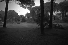 L1045589 by fiumepo - Lidi ferraresi