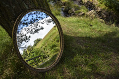 From A Different Angle (Kristine McCormick Photography) Tags: nature mirror reflections recevoir odd photography nikon distorted distortion ipad shadows