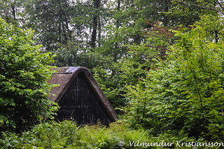 Shed in Engelsholm woods (DSC_3554vk)