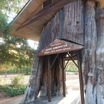 2017 09 24b Smokey Point Rest Stop 5 thumbnail