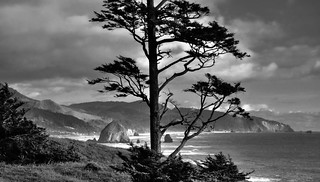 Looking to Cannon Beach (Ecola State Park, Black & White)