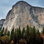 The Textured Face of El Capitan (Yosemite National Park) thumbnail