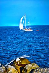 "Hei ... vengo anch' io !!! (wallace39 "" mud and glory "") Tags: mare sea cielo sky gabbiano seagull barca boat scogli rocks autofocus ""magicmomentsinyourlifelevel3"""