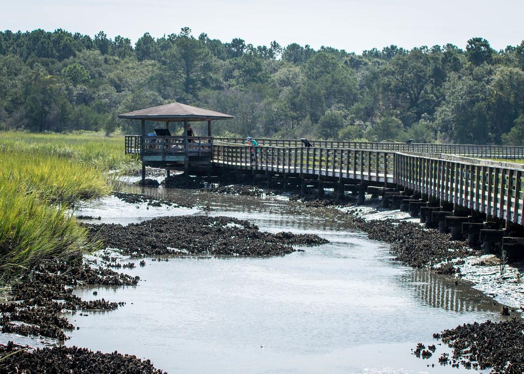 Hunington Beach State Park South Carolina