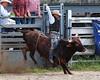 P9020030 (David W. Burrows) Tags: rodeo cowboy cowgirls horses bulls bullriding children teens girls boys kids boots bullfighters saddles clown cowboys clowns fun