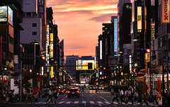 tokyo sunset (poludziber1) Tags: city colorful cityscape color colorfull capital clouds cars car orange tokyo japan street streetphotography skyline summer sky sunset urban travel traffic people asia